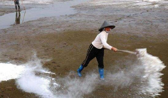 小龙虾养殖池塘用生石灰消毒的方法
