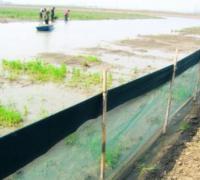 池塘养殖小龙虾的防逃设施有哪些