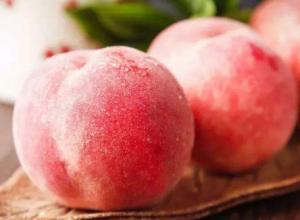 水蜜桃的产地分布