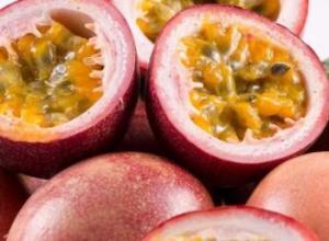 百香果种植多久能结果