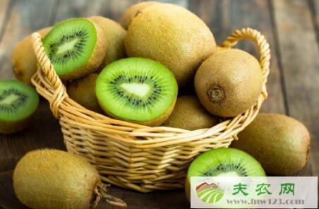 猕猴桃品种有哪些